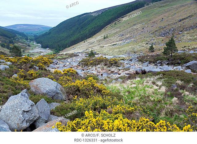 Wicklow Gap, Wicklow mountains, County Wicklow, Ireland
