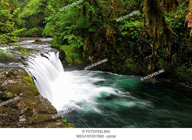 USA, Oregon, Hood River County, Columbia River Gorge, Lower Punch Bowl Falls