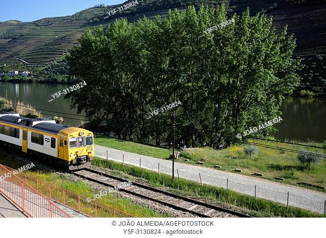Train that goes along the Douro river