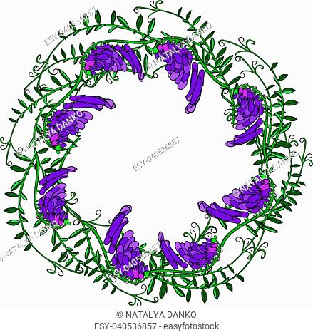 wreath of mouse purple peas and green leaves isolated on white background