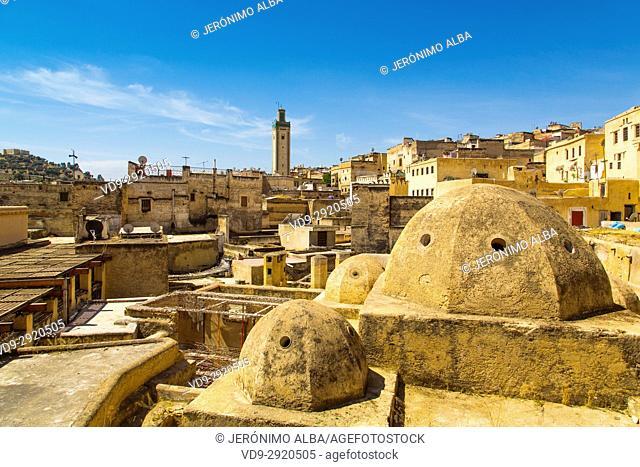 Souk Medina of Fez, Fes el Bali. Morocco, Maghreb North Africa