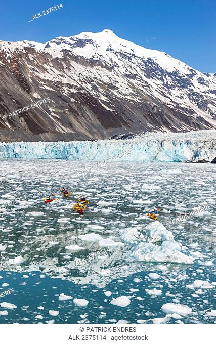 Sea Kayakers in floating icebergs from Cascade, Barry and Coxe glaciers in Barry Arm, northern Prince William Sound, southcentral Alaska