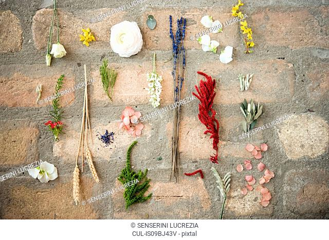 Still life of flower heads, leaves and stems on stone floor, overhead view