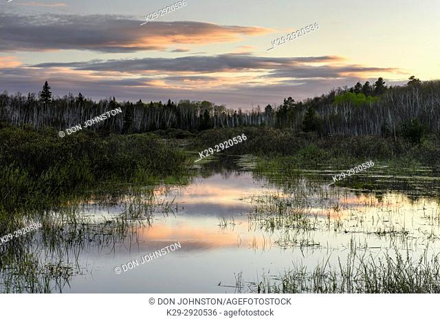 Sunset skies reflected in a beaver pond, Greater Sudbury, Ontario, Canada