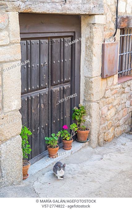 Cat by a door. San Martin del Castañar, Sierra de Francia Nature Reserve, Salamanca province, Castilla Leon, Spain