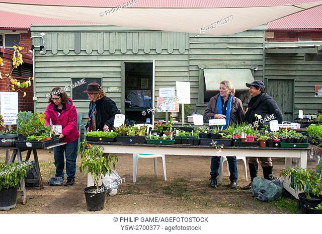 Volunteers stage an open day at a community garden in suburban Melbourne, Australia, taking advantage of the federal election polling in the adjoining hall