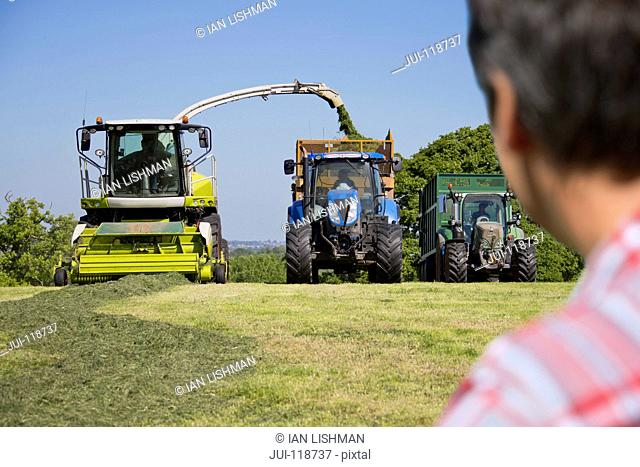 Farmer looking at forage harvester cutting grass silage crop and filling tractor trailer