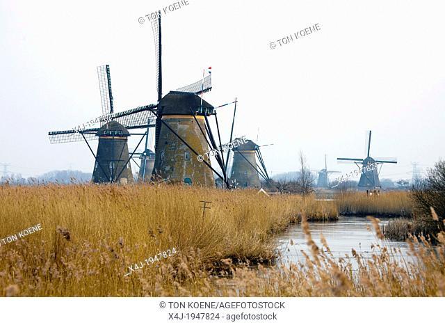 19 mills at the 'kinderdijk' near Rotterdam