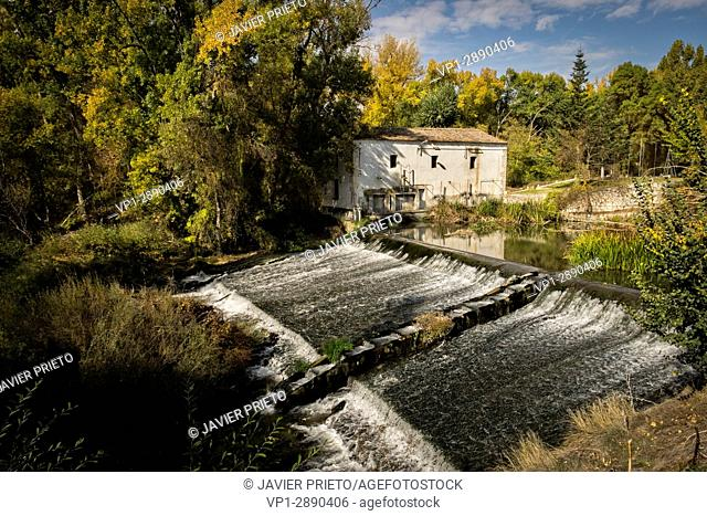 Mill and fishery in the river Duratón in the walk that joins Peñafiel and Pesquera de Duero by the marked path GR. 14. Ribera del Duero. Valladolid