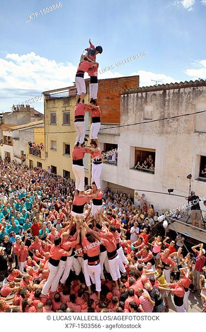 Colla Vella dels Xiquets de Valls, 'Castellers' (human towers), a Catalan tradition. Doctor Robert street, La Bisbal del Penedès, Tarragona province, Spain