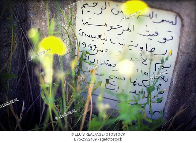 Headstone of a grave in a graveyard with a text in Arabic and a blured flowers in the foreground. Cemetery of Bab Guissa, Fez, Morocco, Africa