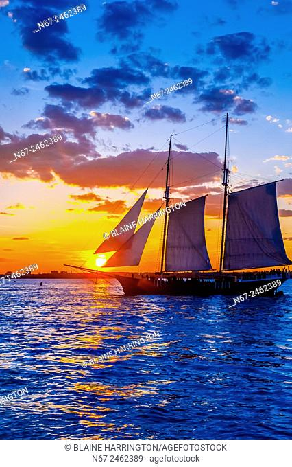 Sailing ship in New York harbor at sunset, New York, New York USA