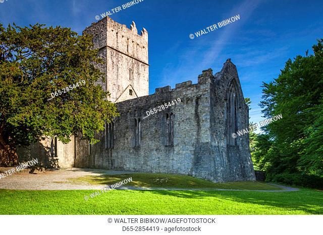 Ireland, County Kerry, Ring of Kerry, Killarney, Muckross Abbey ruins, 15th century