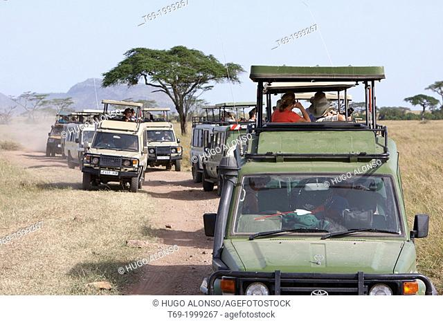 Traffic jam in the Serengeti National Park