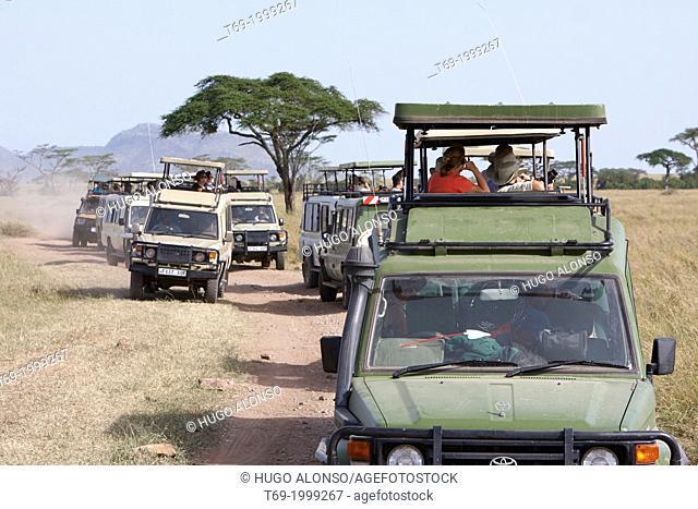 Traffic jam in the Serengeti National Park