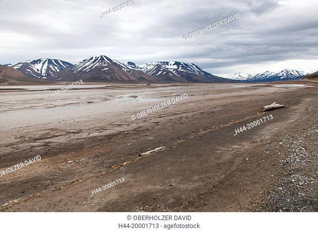 Spitsbergen, Svalbard, Longyearbyen, tundra