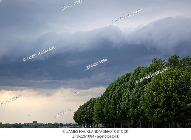 Storm clouds and trees blowing in the wind at Whitby Lions Promenade in Whitby, Ontario, Canada