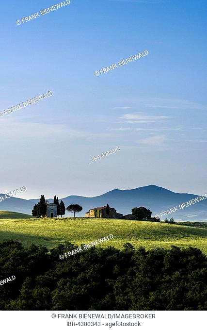 Typical green Tuscan landscape in Val d'Orcia with farm and chapel on hill, fields, cypresses, trees and blue, cloudy sky, San Quirico d'Orcia, Tuscany, Italy