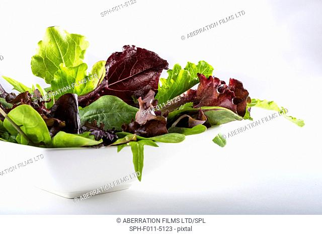 Salad leaves in a white bowl