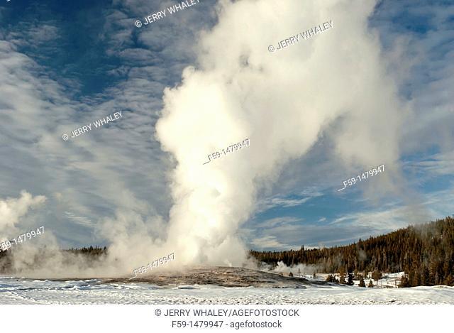 Old Faithful Geyser Eruption, Winter, Yellowstone NP, WY