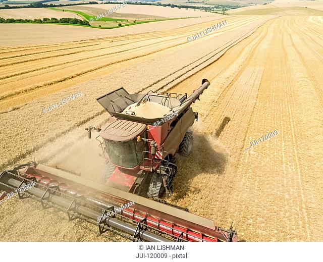 Harvest aerial landscape of combine harvester cutting summer wheat field crop with tractor trailer and blue sky on farm