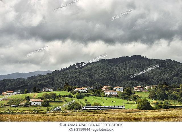 Tren cruzando la Reserva de la Biosfera del Urdaibai, Biscay, Basque Country, Euskadi, Euskal Herria, Spain, Europe