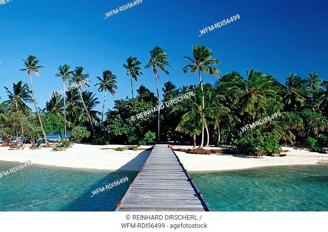 Palmy Beach on Maledivian Island, Indian Ocean, Medhufushi, Meemu Atoll, Maldives