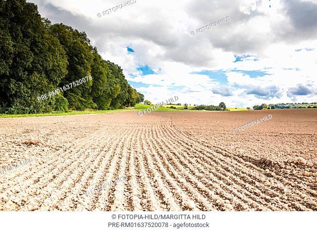 Landscape between Esebeck and Barterode, Flecken Adelebsen, Naturraum Sollingvorland, Landkreis Göttingen, Niedersachsen, Germany