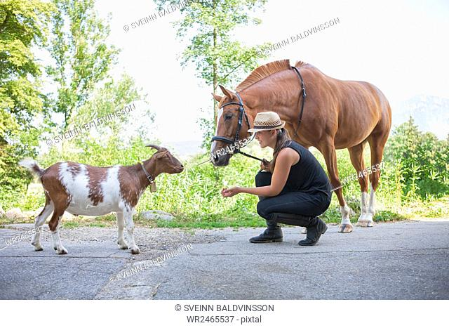 Young woman on farm with goat and horse