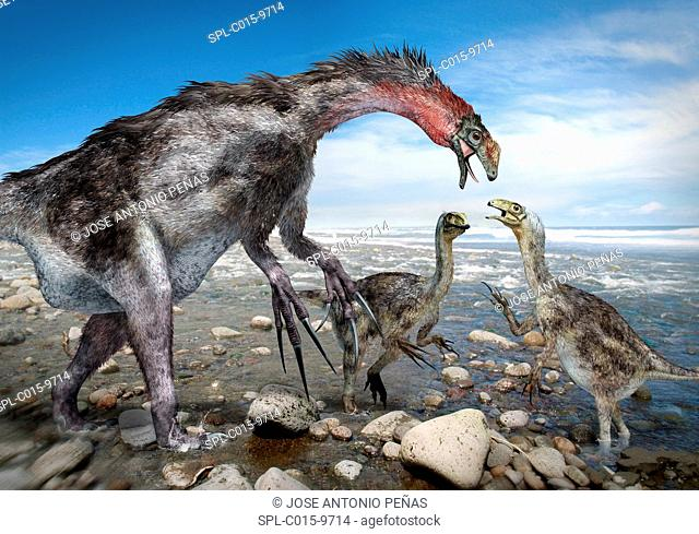 Nothronychus dinosaur family, artwork. This theropod dinosaur, found in what is now North America some 91 million years ago, lived during the Cretaceous