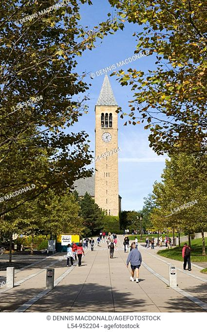 McGraw Tower and Chimes Cornell University Campus Ithaca New York Finger Lakes Region