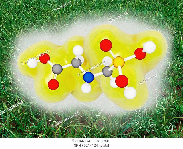 Glyphosate molecule, illustration