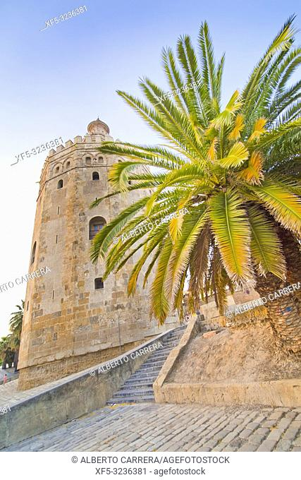 Torre del Oro, Gold Tower, Sevilla, Andalucía, Spain, Europe
