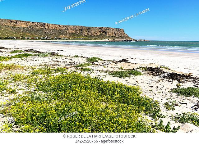 Elands Bay. Namaqualand. Western Cape. South Africa