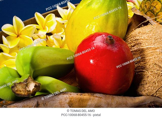 Studio shot of a variety of tropical fruit close-up