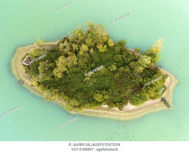 Island in swamp, Jumieges, Seine-Maritime, Normandy, France