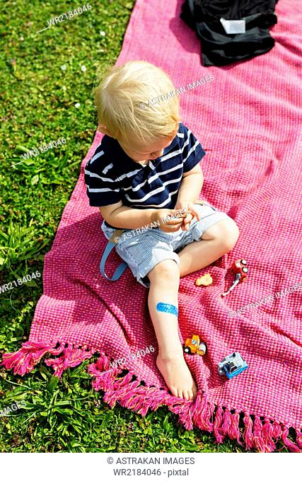 High angle view of boy holding cookie while sitting on picnic table