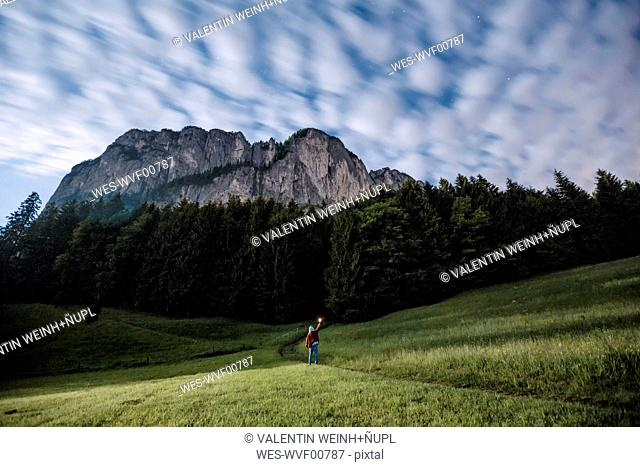 Austria, Mondsee, back view of young man with torch on a meadow at moonlight
