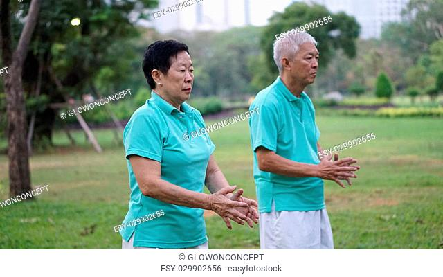 Asian Senior Elderly couple Practice Taichi, Qi Gong exercise outdoor park