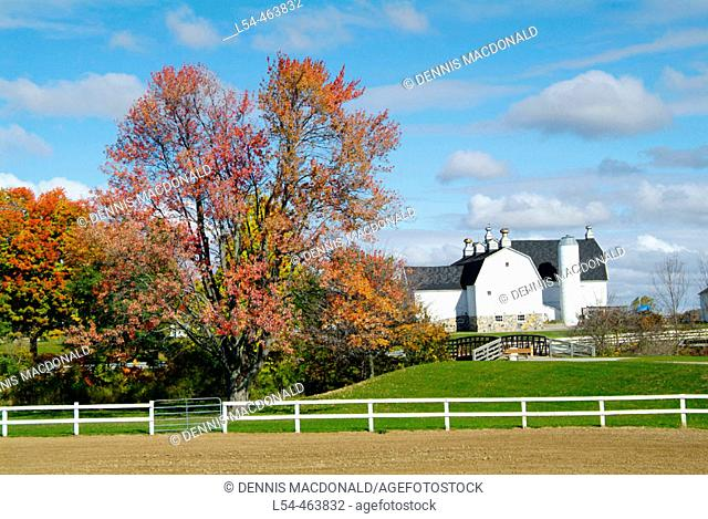 Northern Indiana agriculture farming scene during the autumn fall colors. The image was taken in La Grange county along the east/west route of highway 20