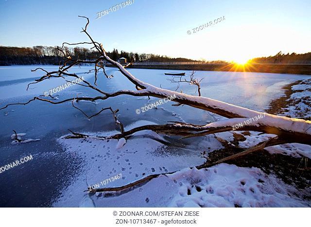 Abgestorbener Baum vor untergehender Sonne, Neyetalsperre im Winter, Wipperfuerth, Bergisches Land, Nordrhein-Westfalen, Deutschland, Europa