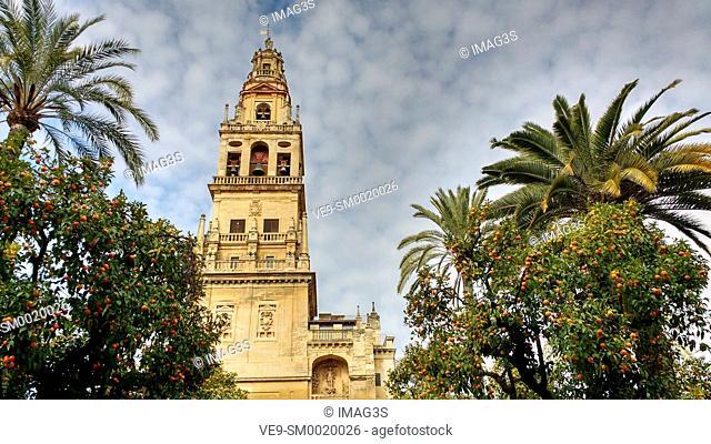 Tower and «patio de los naranjos», Mezquita Cathedral Arab Wall. Cordoba City Andalusia, Spain, Europe