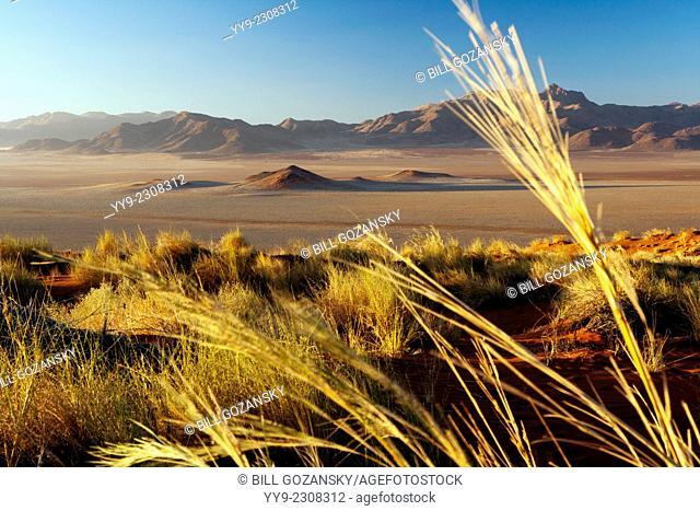 Wolwedans Landscape - NamibRand Nature Reserve - Hardap Region, Namibia, Africa