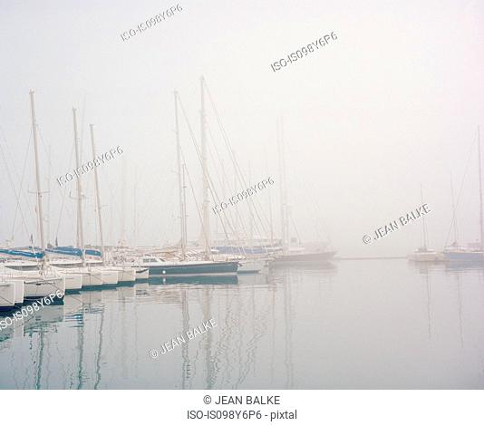 Boats in harbour in fog