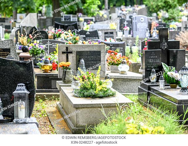 Polish cemetery full of beautiful flowers and candles placed on graves, Krak—w, Lesser Poland Voivodeship, Poland