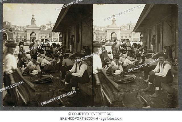 Fish market in Lisbon, Portugal, 1911