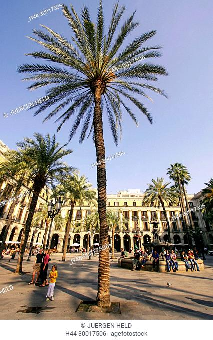 Spain, Barcelona, Catalonia, Barri Gotic, Placa Reial, Piaza Real, Plaza Reial, Royal Plaza
