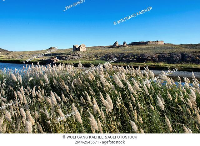 Landscape with grasses along the Ongi River near the Ongiin Khiid monastery in central Mongolia