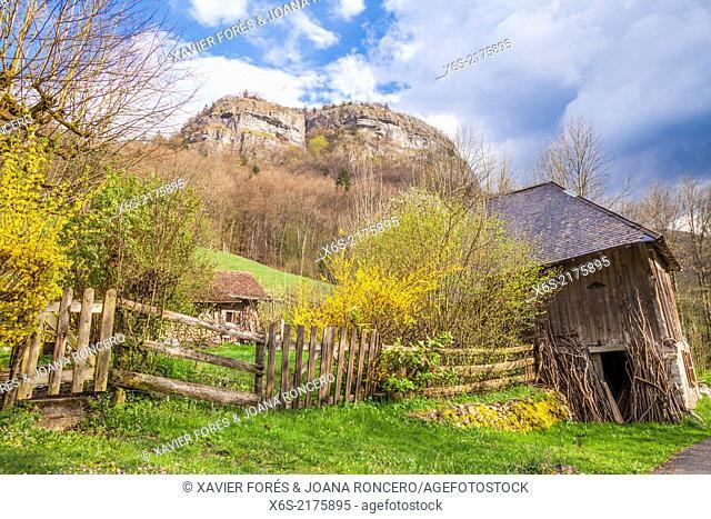 Natural Park des Massif de Bauges, Haute-Savoie, Rhône-Alpes, France