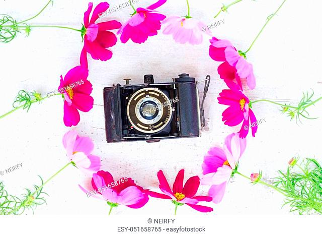 Cosmos and jasmine flowers with retro photo camera
